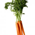 Purple Carrots?