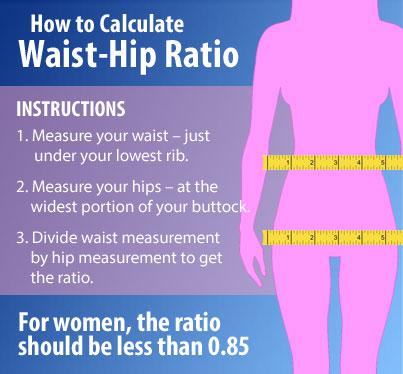waist-ratio2